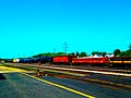 Canadian Pacific Tank Cars Portage Rail Yard - panoramio.jpg