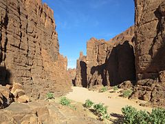 Canyon in the Ennedi (24021819150).jpg