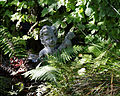 Capel-Manor-Gardens garden-sculpture feature.jpg