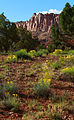 Capitol Reef National Park Public Domain.jpg