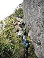 Cavalinho^ - panoramio (1).jpg