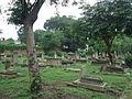 Cemeteries in Kydganj 9.JPG