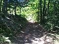 Chénas - Sentier vers le Bal trap - panoramio.jpg