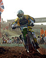 Chad Reed MXoN 2008.jpg