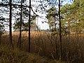 Cherkas'kyi district, Cherkas'ka oblast, Ukraine - panoramio (531).jpg