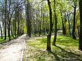 Chertanovo Severnoye District, Moscow, Russia - panoramio (21).jpg