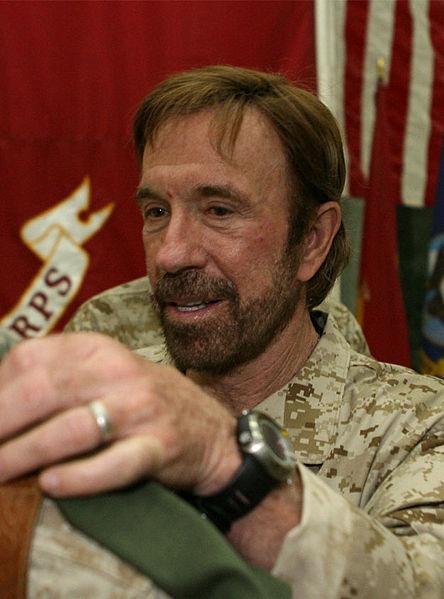 Chuck Norris Wikipedia image