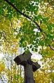 "Cincinnati – Spring Grove Cemetery & Arboretum ""Autumn Cross"" (15715191612).jpg"