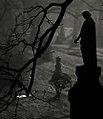 "Cincinnati - Spring Grove Cemetery & Arboretum ""An Ethereal Morning"" (5302314866).jpg"