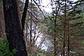Clackamas Wild and Scenic River (27727588180).jpg