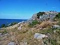 Cliffs at Hovs Hallar.jpg