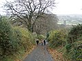 Climbing the hill, west of Widecombe village - geograph.org.uk - 1046244.jpg