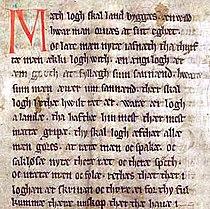 Codex Holmiensis CE 1350.jpg