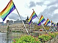Coming-Out Day 2020 in The Hague - Rainbow flags at Hofvijver next to the national parlement of the Netherlands - img 01.jpg