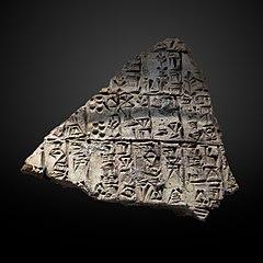Cone fragment-AO 12779