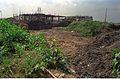Convention Centre Complex Under Construction - Science City - Calcutta 1994-10-22 102.JPG