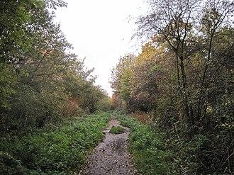 Copthall Railway Walk and Copthall Old Common - Copthall Railway Walk