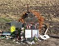 CrashMemorial 3 May 2009.jpg