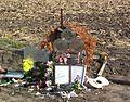 CrashMemorial 3 May 2009.jpg