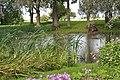 Dīķis Pļavu pusmuižā, Laucienes pagasts, Talsu novads, Latvia - panoramio.jpg