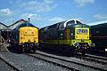 D9009, 55019 - Didcot Railway Centre (8863674825).jpg