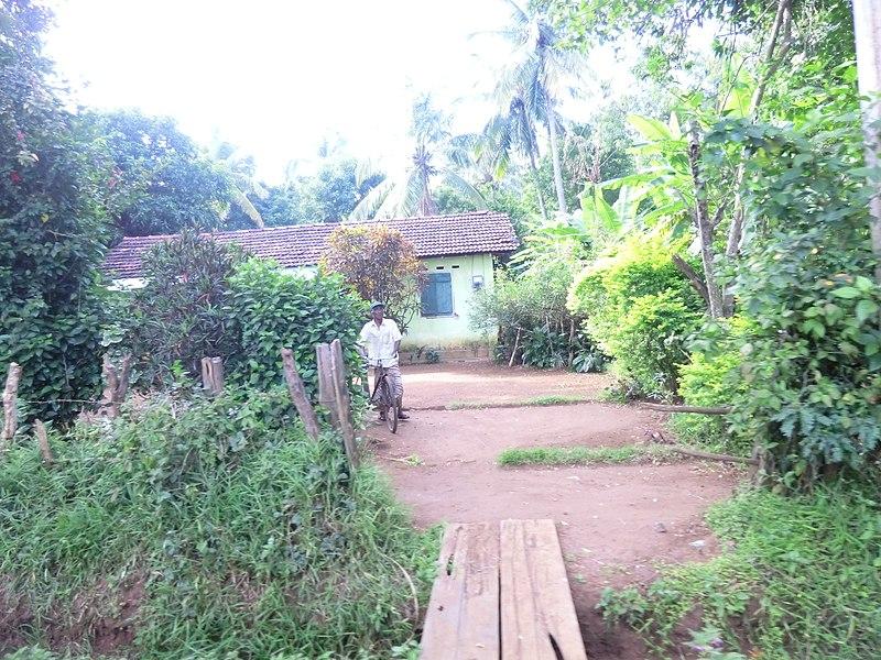 File:Dambulla, Sri Lanka - panoramio (28).jpg