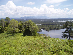 West Kalimantan - Danau Sentarum National Park is a wetland of international importance located in the north of the province