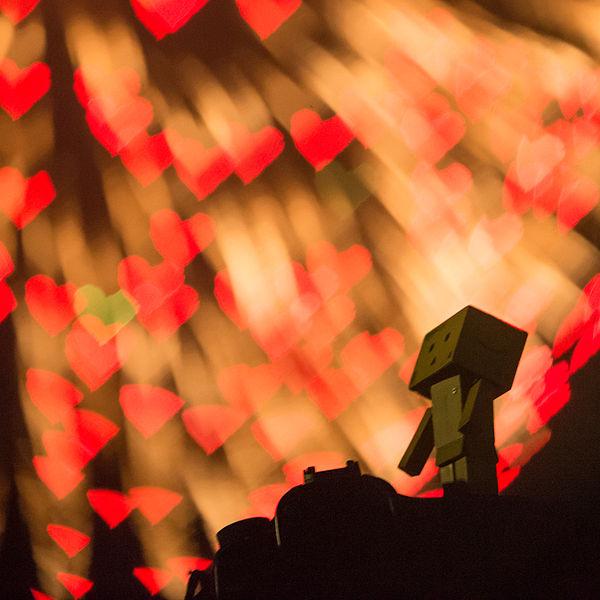 File:Danbo enjoys the fireworks of LOVE (7729344264).jpg