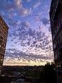 Dawn in Yerevan.jpg