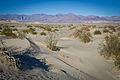 Death Valley Sand Dunes — Mesquite Flats 6914322889 o.jpg