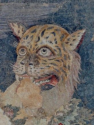 Mosaics of Delos - Image: Delos Museum Mosaik Dionysos 09