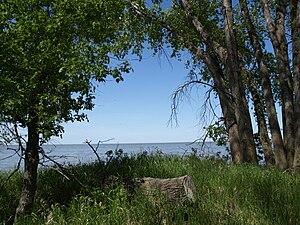 Lake Manitoba - Image: Delta Marsh Field Station Manitoba Canada (3)