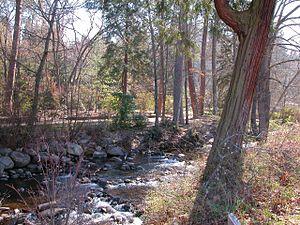 Lithia Park - Ashland Creek
