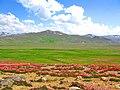 Deosai Plateau 2.jpg