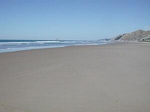 Ocean Beach, Hawke's Bay - Ocean Beach