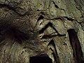 Devetashka cave 031.jpg