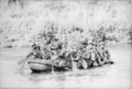 Diggers paddling accross the Song Be during Operation Silver City (AWM CUN660199VN).png