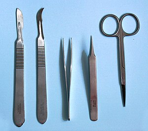 Dissection - Dissection tools. Left to right: scalpels with No. 20 and No. 12 blades, two forceps and scissors