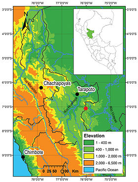 Distribution of Enyalioides azulae and Enyalioides binzayedi in Peru - ZooKeys-277-069-g006.jpg