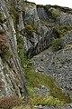 Disused quarry above Dinas Mawddwy - geograph.org.uk - 1547563.jpg