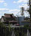 Dmytrivka (Fastiv) farm1.JPG