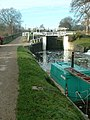 Dowley Gap Locks, Leeds and Liverpool Canal - geograph.org.uk - 86737.jpg