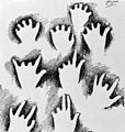 Drawings of hands. Wellcome M0004683.jpg