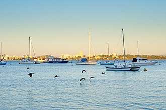 Matilda Bay - Image: Ducks fly over the water at Matilda Bay