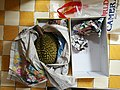 Durian in a box 35372015295.jpg