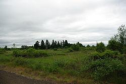E.E. Wilson National Wildlife Area.JPG