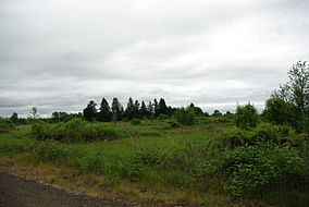 E.E. Wilson National Wildlife Area.JPG