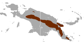 alt=Description de l'image Eastern Long-beaked Echidna area.png.