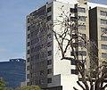 Edificios de Zona Dorada - Irapuato, Guanajuato.jpg