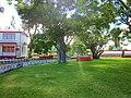 En el Parque de los Caimanes, Chetumal. - panoramio.jpg